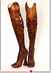 ash-legs