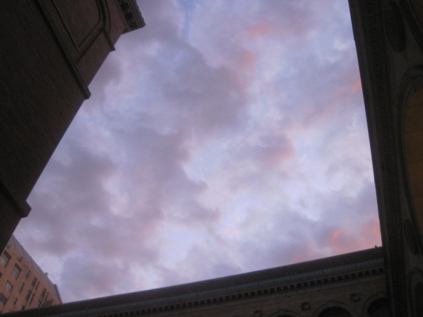 Library sky