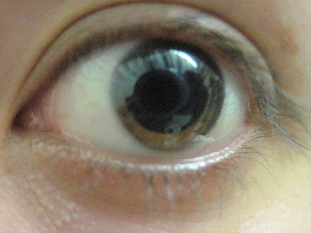 Close-up pupil